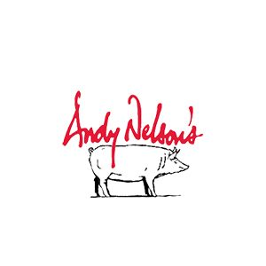Andy Nelson's