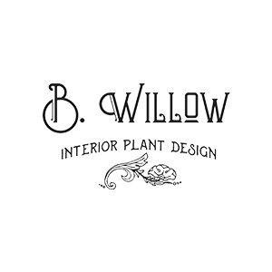 B. Willow Interior Plant Design
